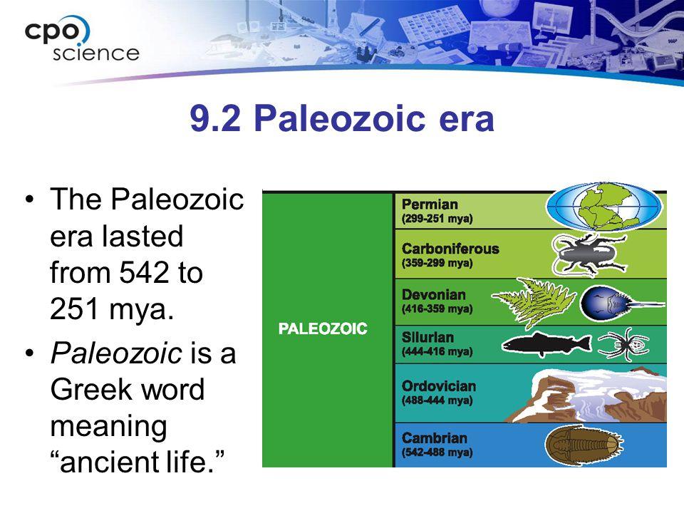 9.2 Paleozoic era The Paleozoic era lasted from 542 to 251 mya.