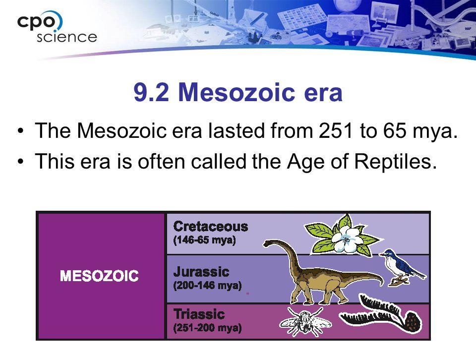 9.2 Mesozoic era The Mesozoic era lasted from 251 to 65 mya.