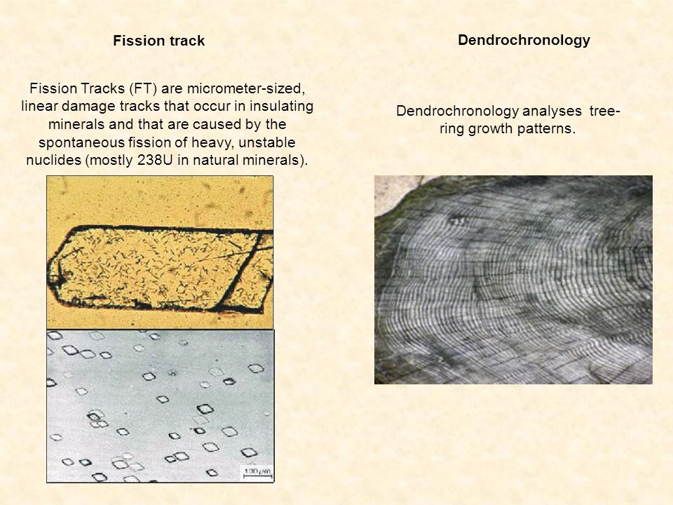 Dendrochronology analyses tree-ring growth patterns.