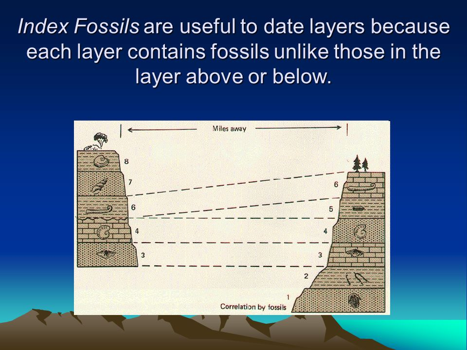 Index Fossils are useful to date layers because each layer contains fossils unlike those in the layer above or below.