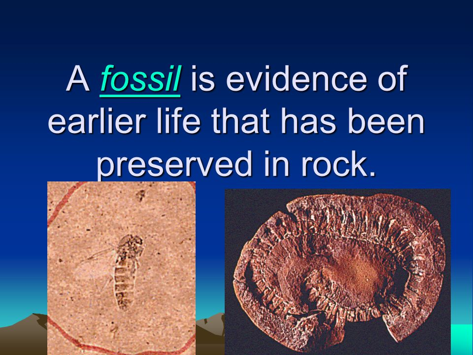 A fossil is evidence of earlier life that has been preserved in rock.