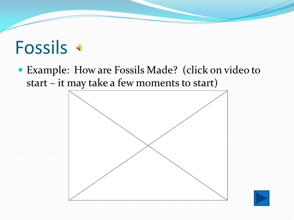 Fossils Example: How are Fossils Made.