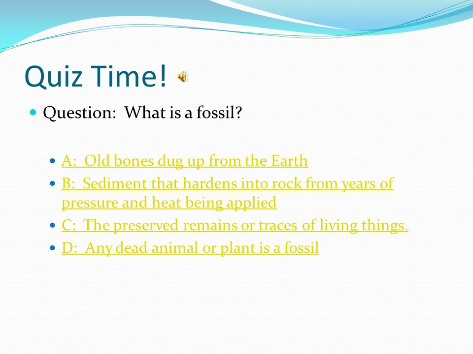 Quiz Time! Question: What is a fossil