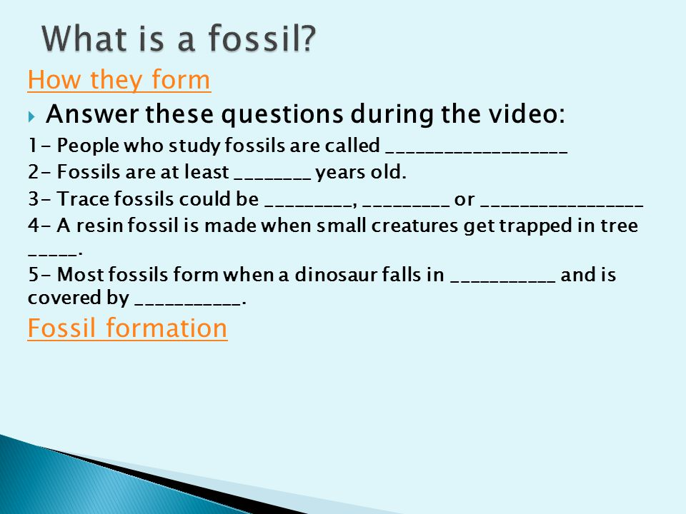 What is a fossil How they form