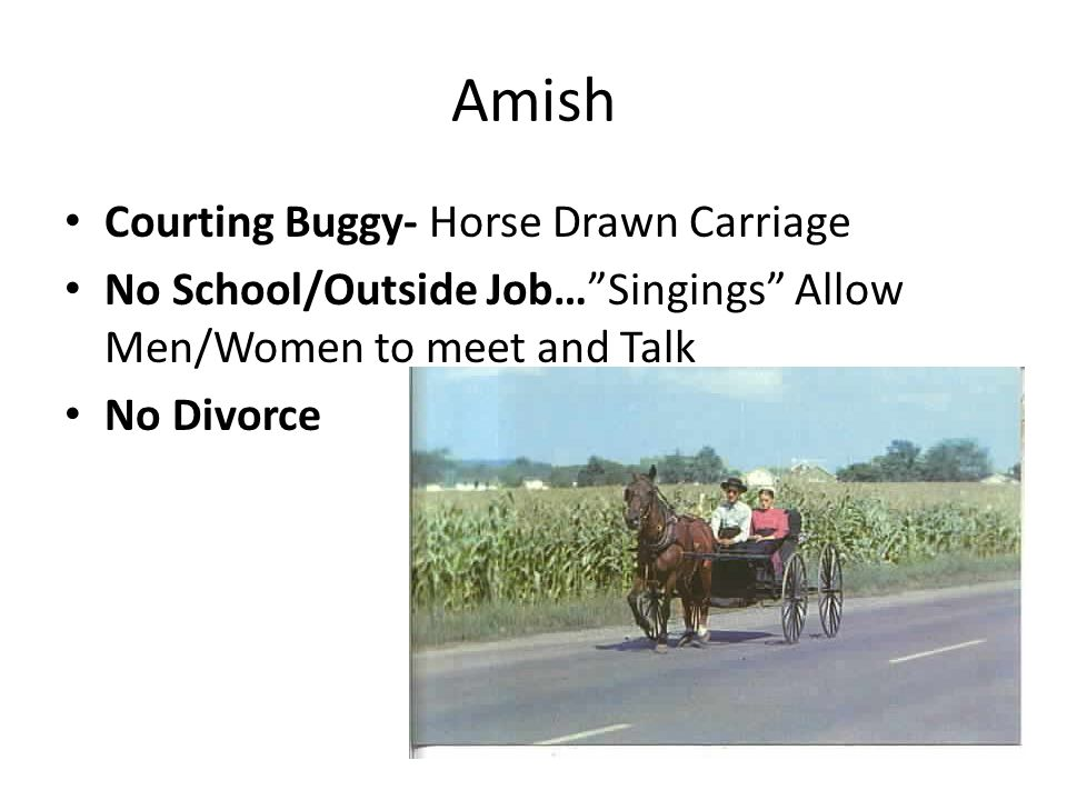 Amish Courting Buggy- Horse Drawn Carriage