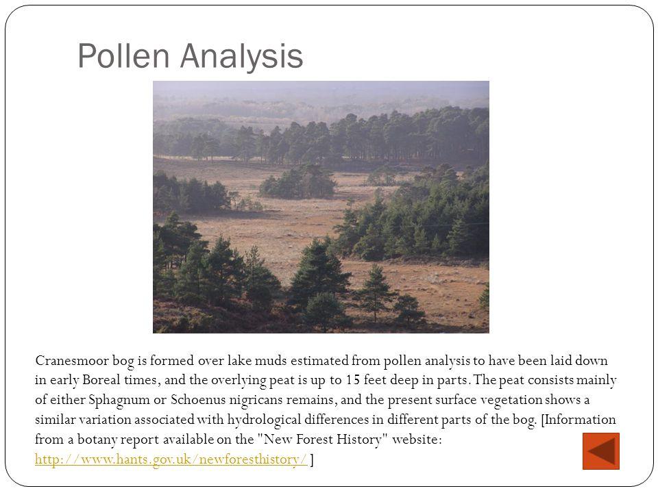 Pollen Analysis