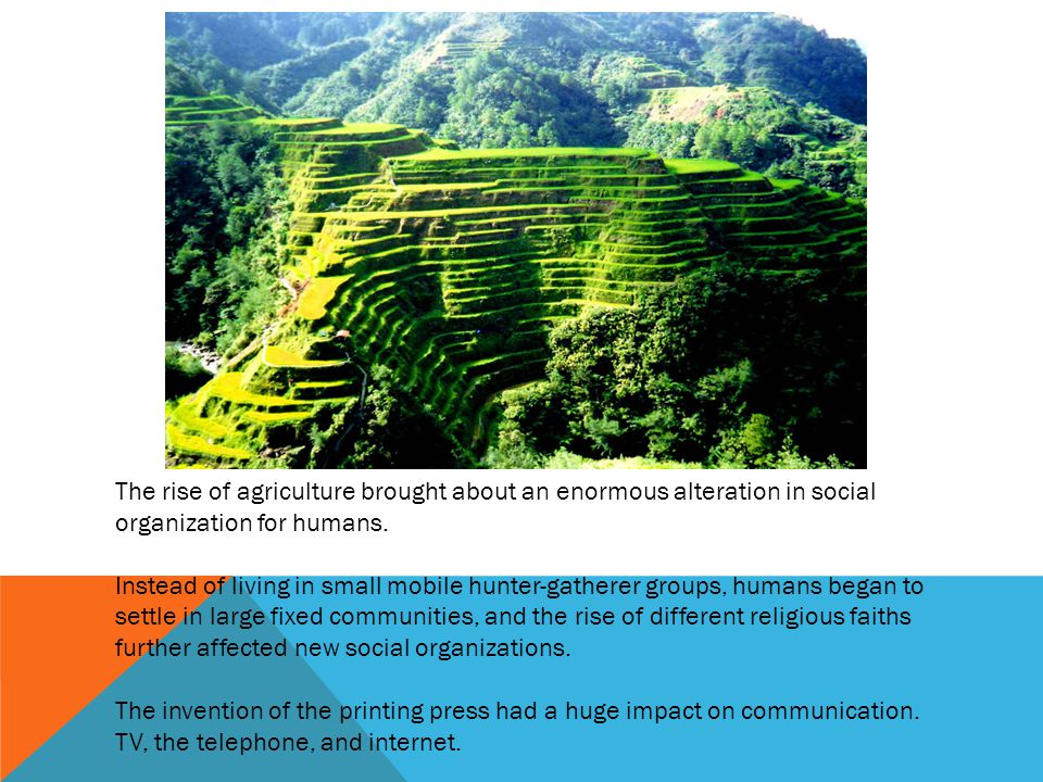The rise of agriculture brought about an enormous alteration in social organization for humans.