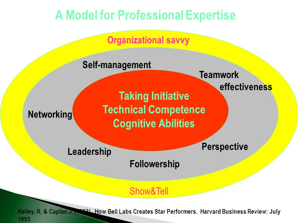 A Model for Professional Expertise