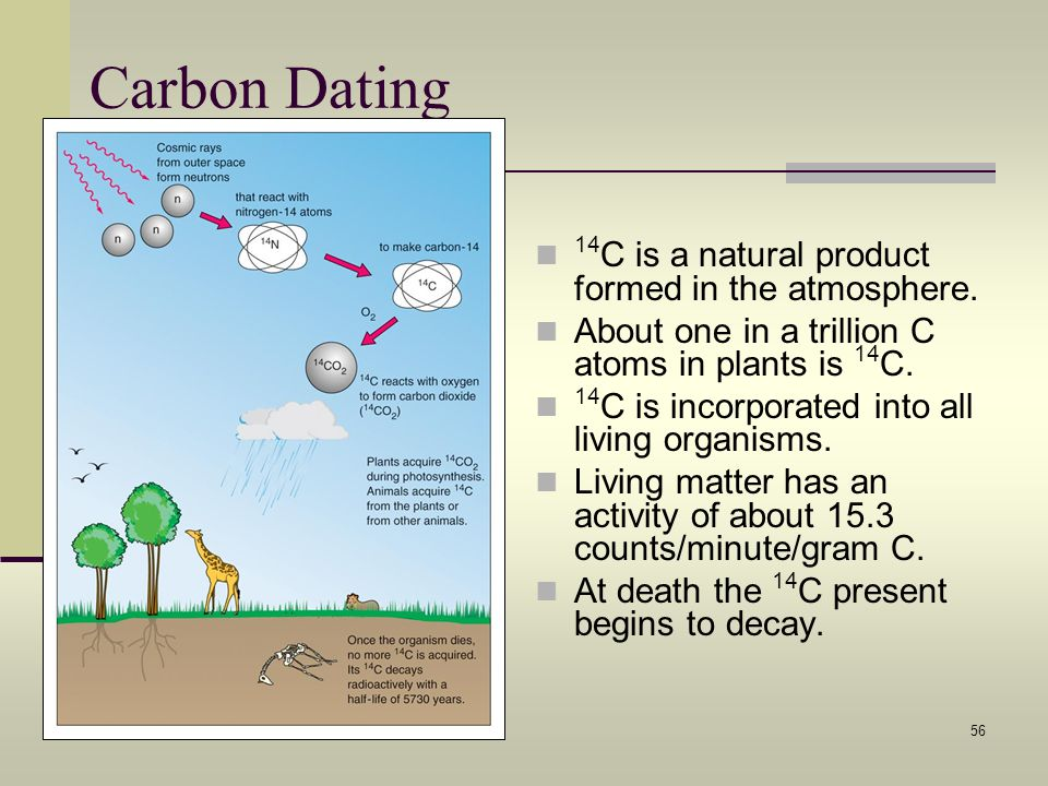 Carbon Dating 14C is a natural product formed in the atmosphere.