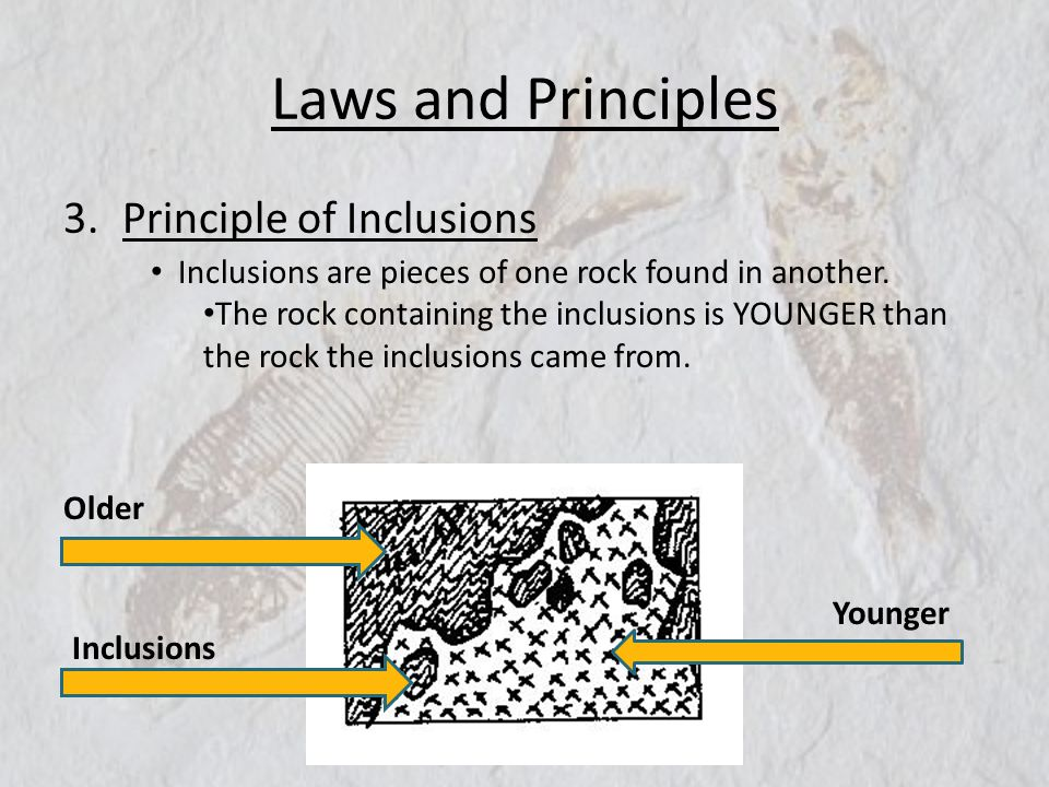 Laws and Principles Principle of Inclusions