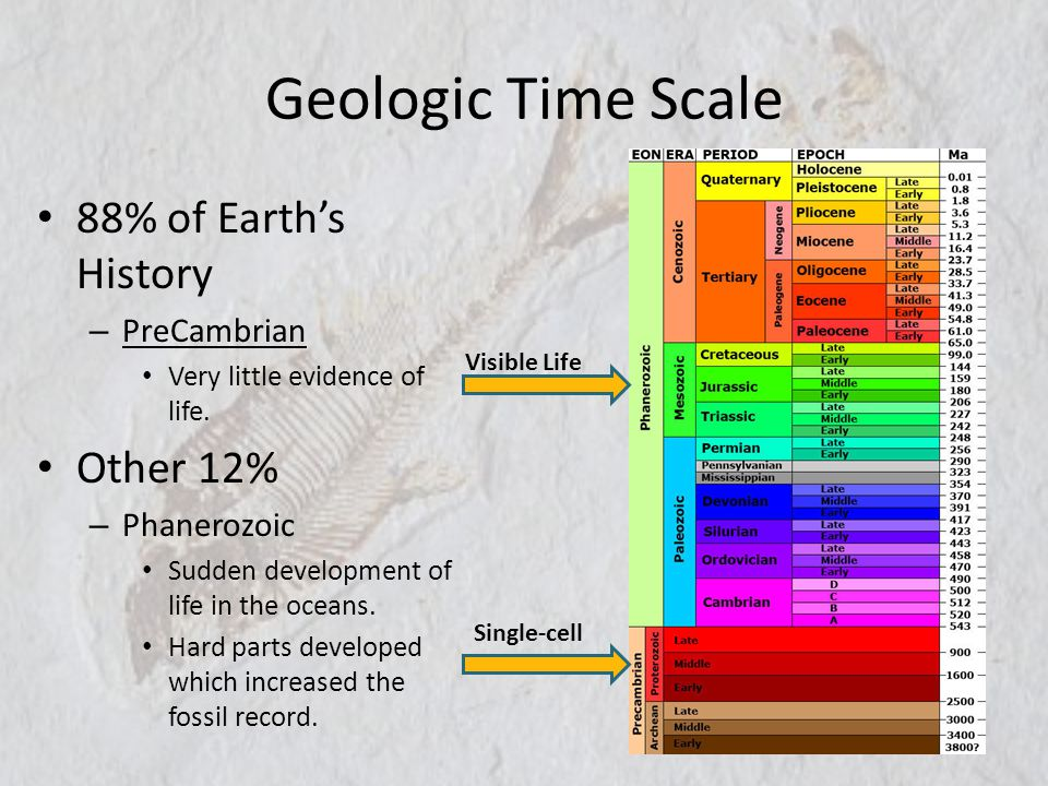 Geologic Time Scale 88% of Earth's History Other 12% PreCambrian