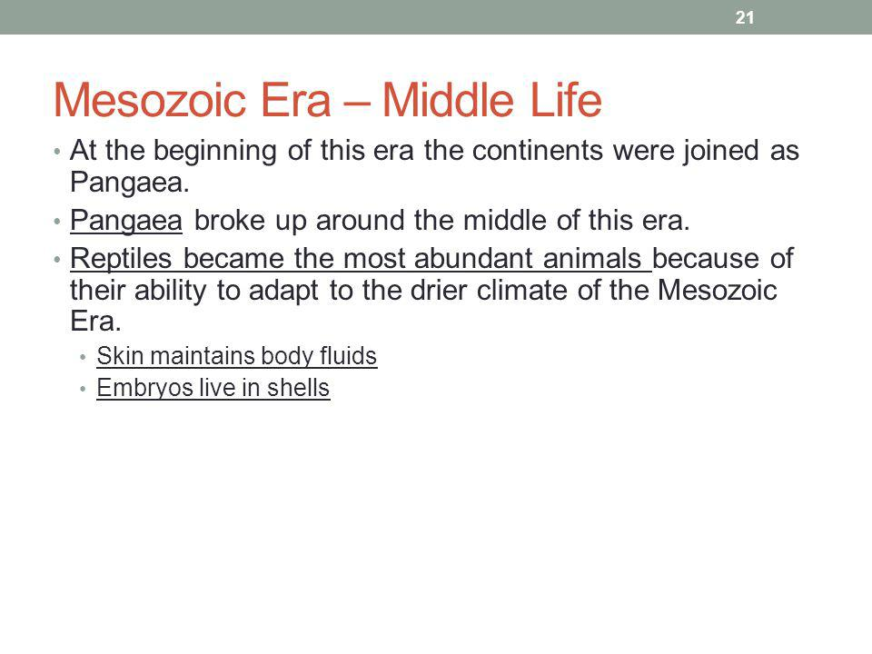 Mesozoic Era – Middle Life