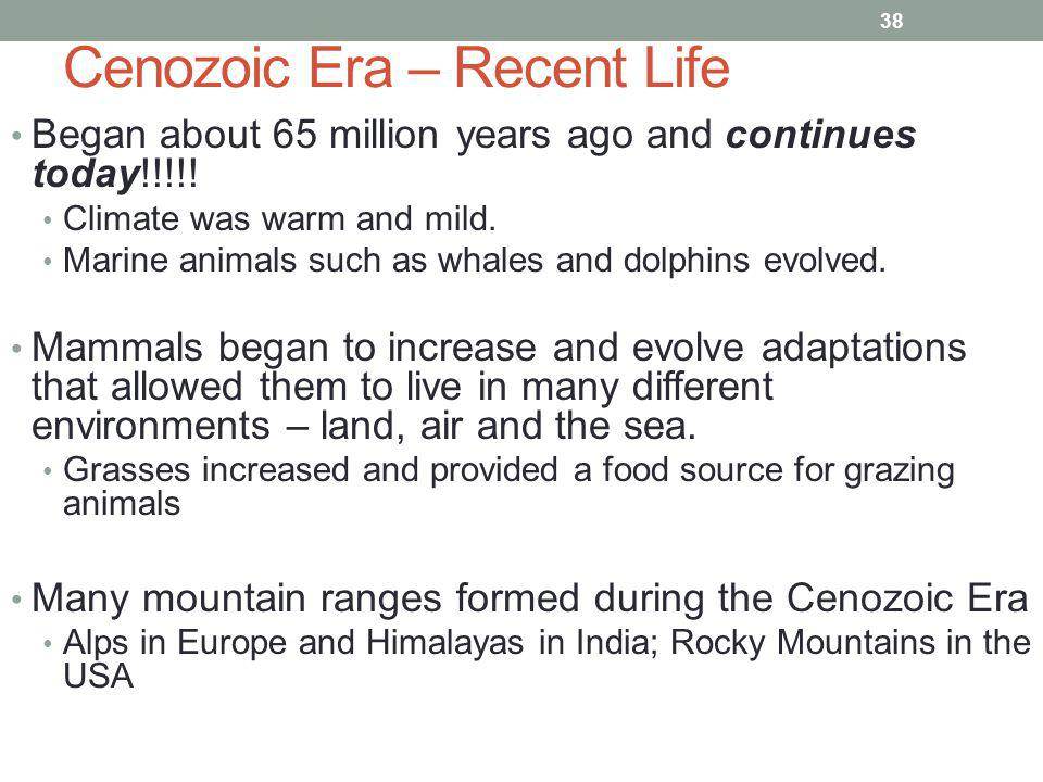 Cenozoic Era – Recent Life