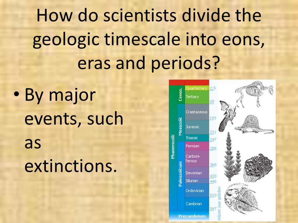 How do scientists divide the geologic timescale into eons, eras and periods