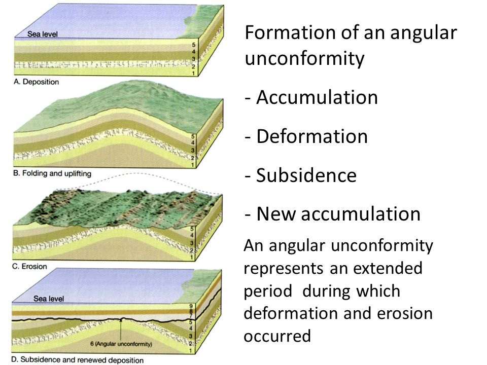 Formation of an angular unconformity - Accumulation - Deformation