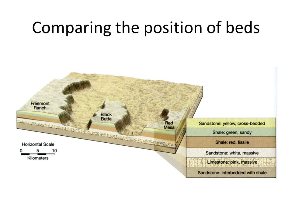 Comparing the position of beds