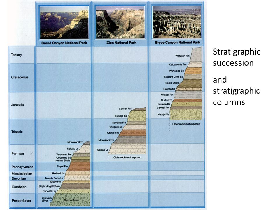 Stratigraphic succession