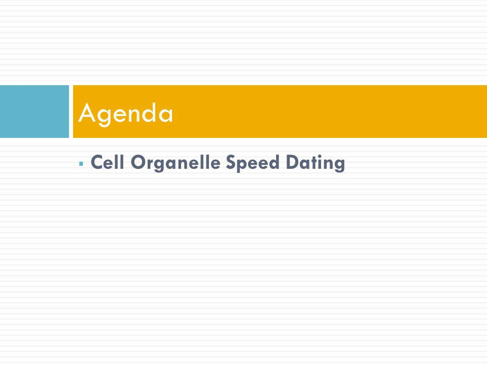 Agenda Cell Organelle Speed Dating