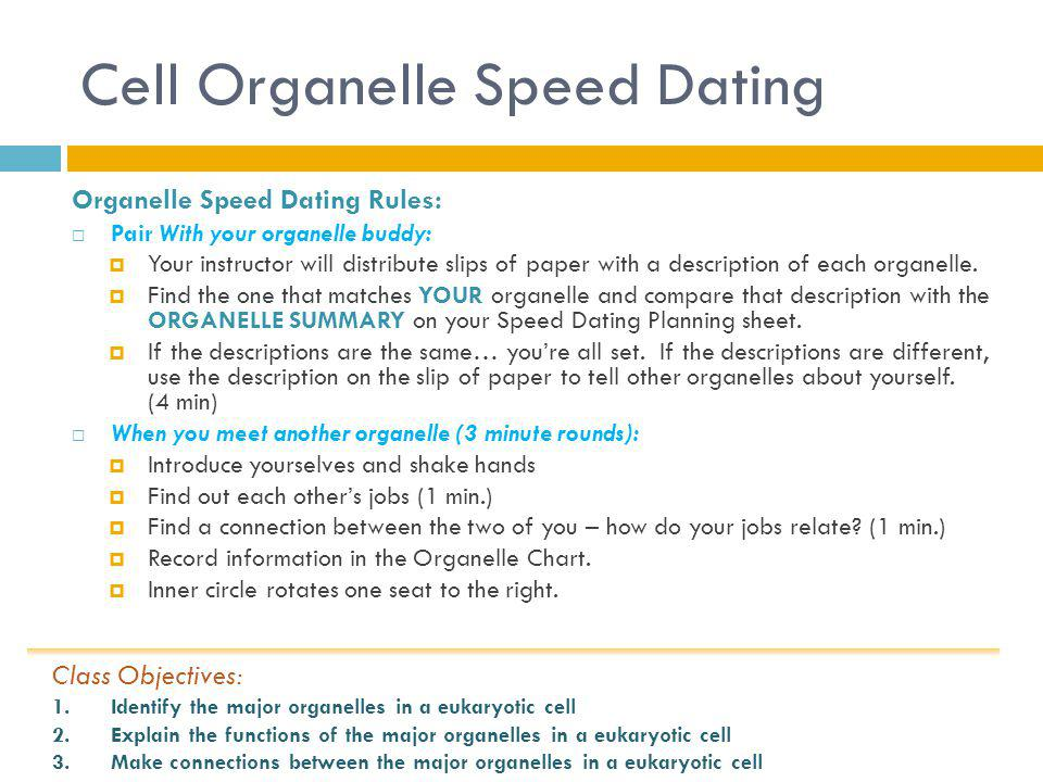 Cell Organelle Speed Dating