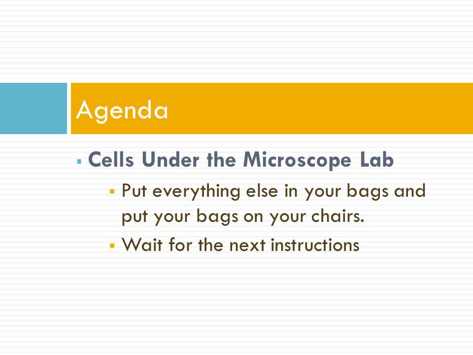 Agenda Cells Under the Microscope Lab