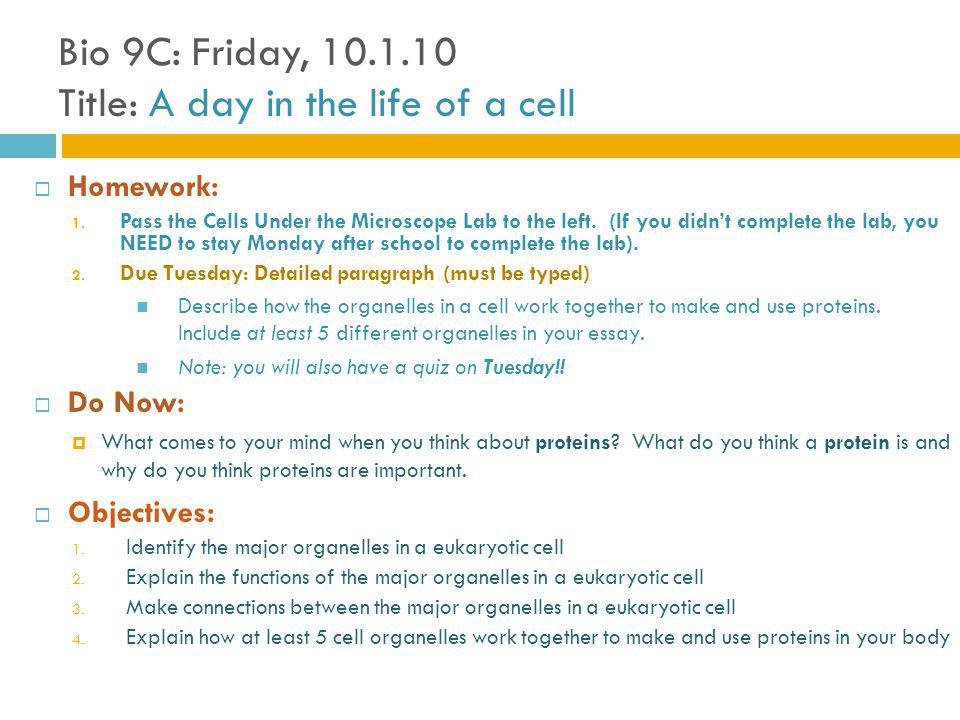 Bio 9C: Friday, 10.1.10 Title: A day in the life of a cell