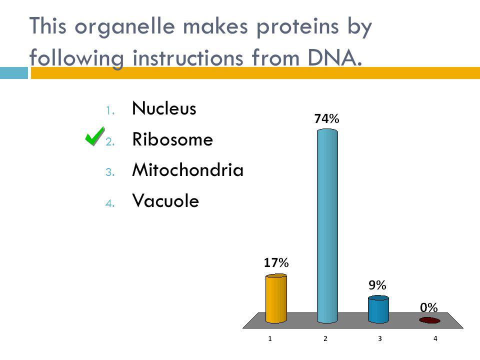 This organelle makes proteins by following instructions from DNA.