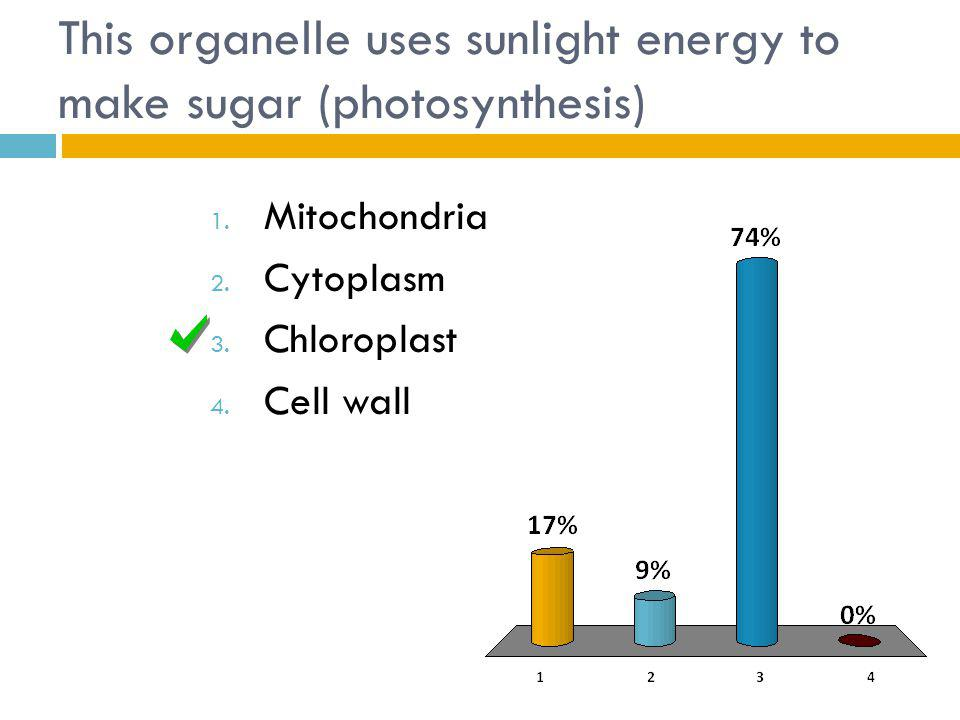 This organelle uses sunlight energy to make sugar (photosynthesis)