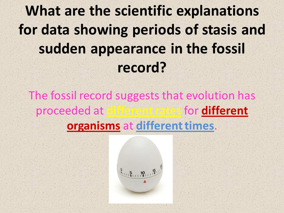 What are the scientific explanations for data showing periods of stasis and sudden appearance in the fossil record