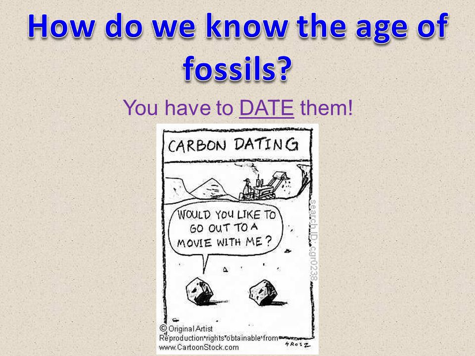 How do we know the age of fossils