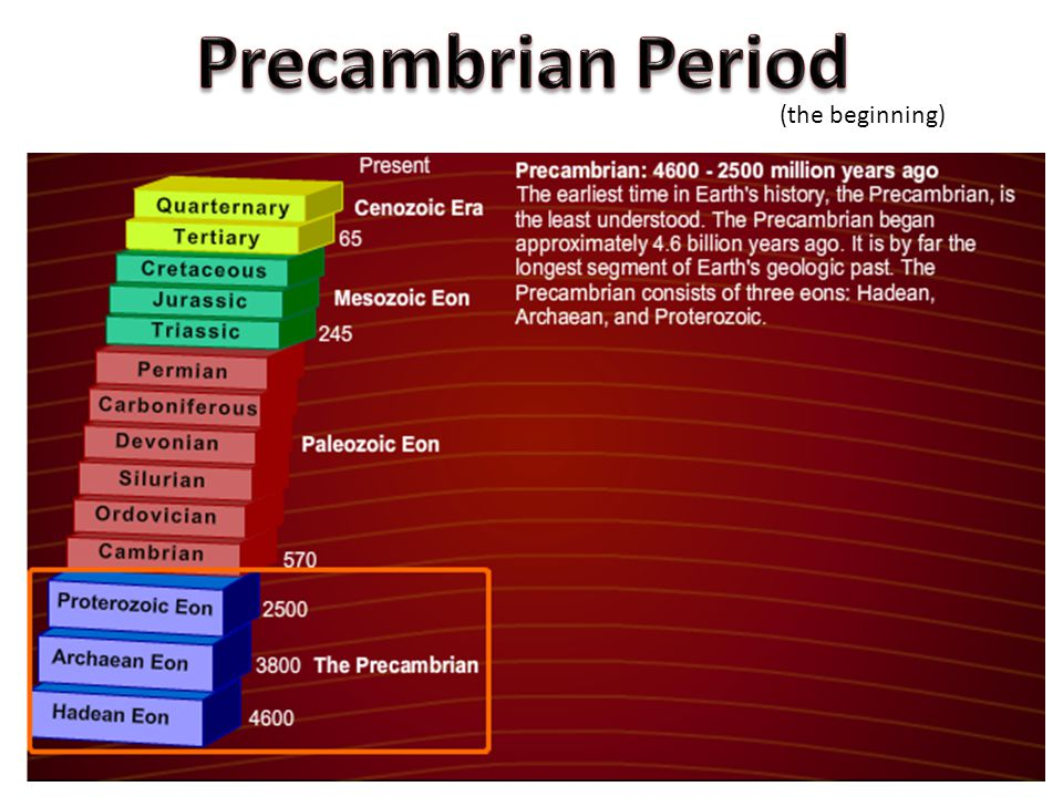 Precambrian Period (the beginning)