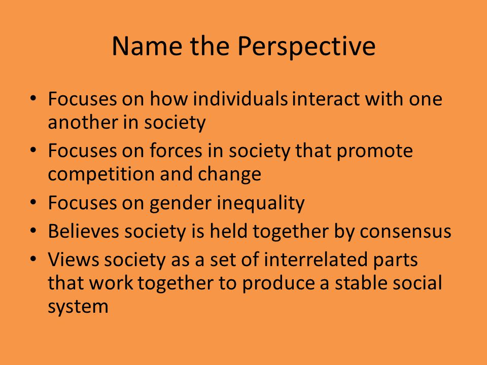 Name the Perspective Focuses on how individuals interact with one another in society.