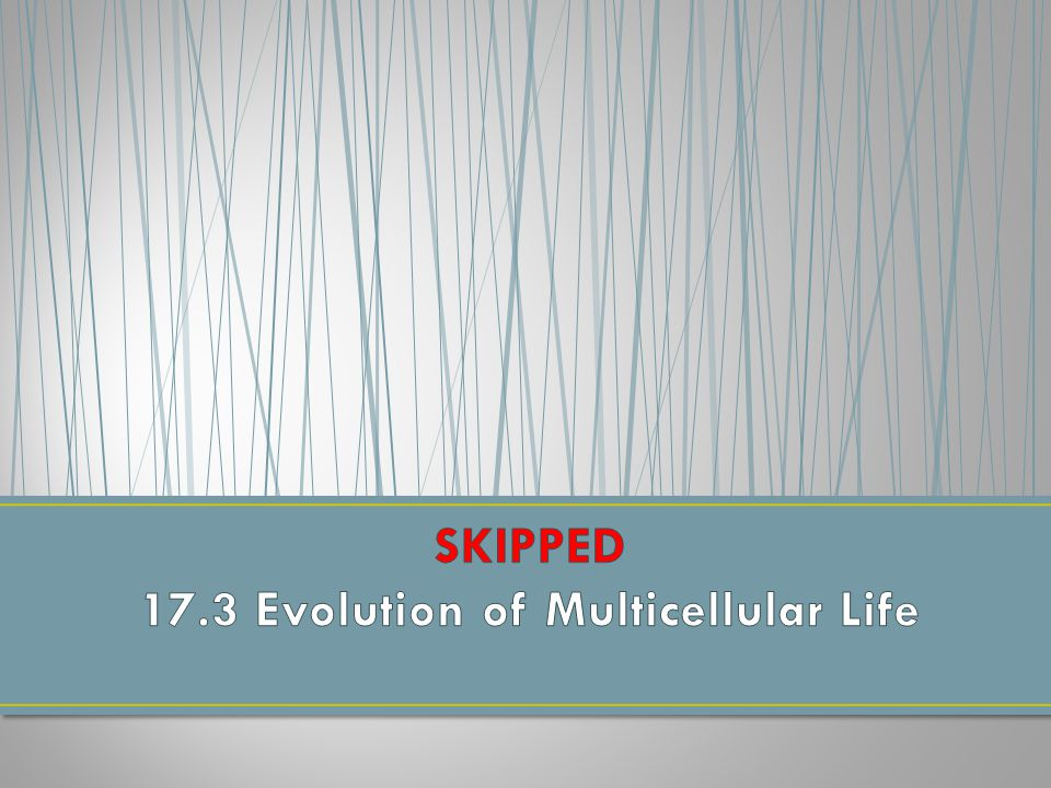 SKIPPED 17.3 Evolution of Multicellular Life