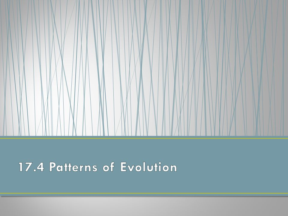 17.4 Patterns of Evolution