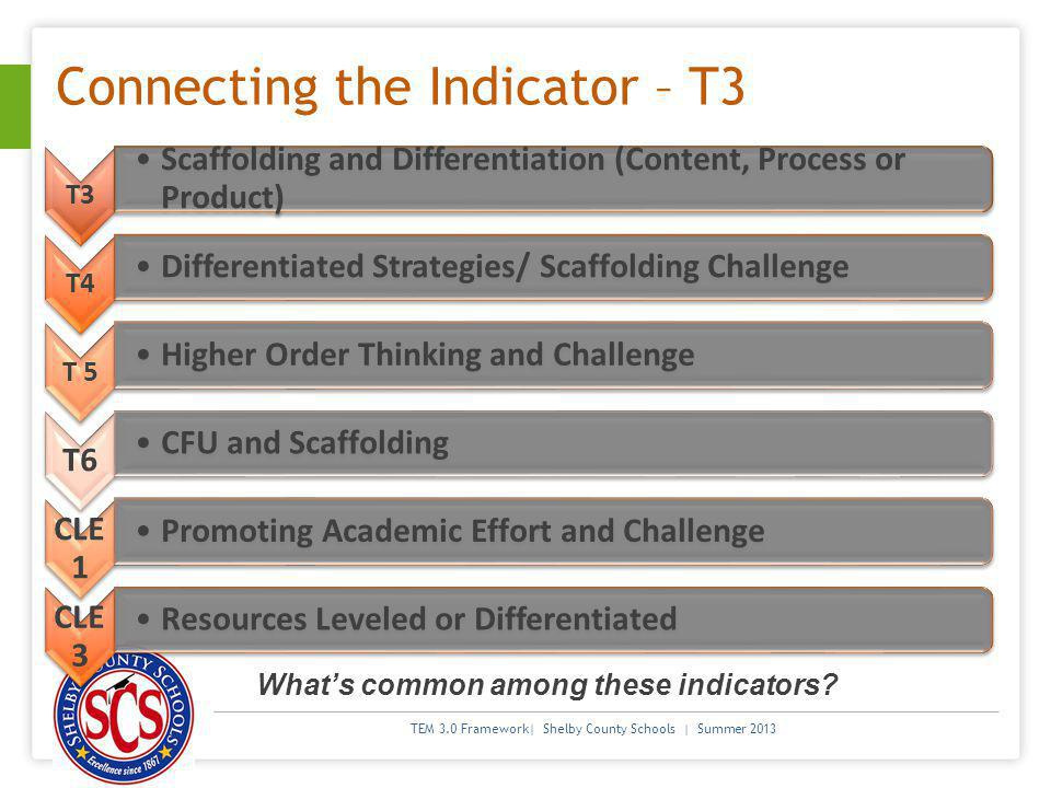 Connecting the Indicator – T3