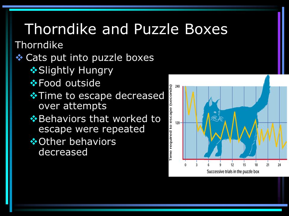 Thorndike and Puzzle Boxes