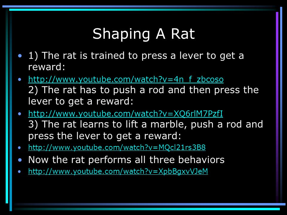 Shaping A Rat 1) The rat is trained to press a lever to get a reward: