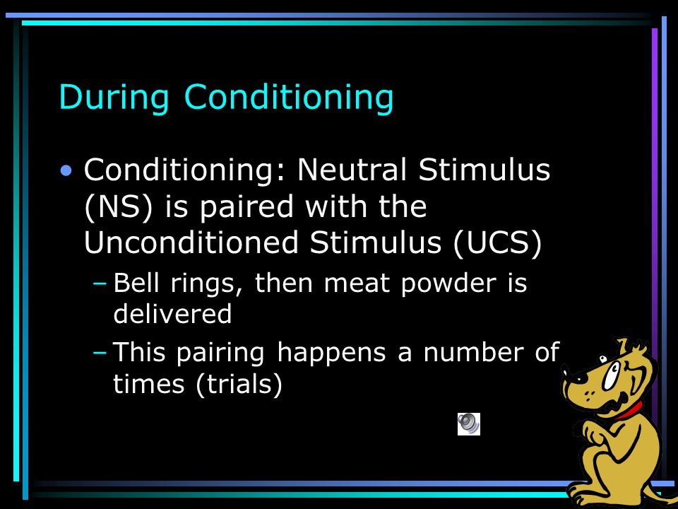 During Conditioning Conditioning: Neutral Stimulus (NS) is paired with the Unconditioned Stimulus (UCS)