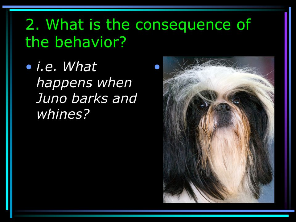 2. What is the consequence of the behavior