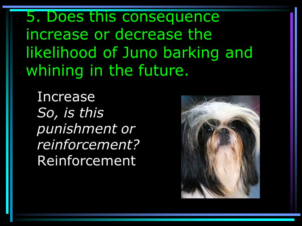 5. Does this consequence increase or decrease the likelihood of Juno barking and whining in the future.