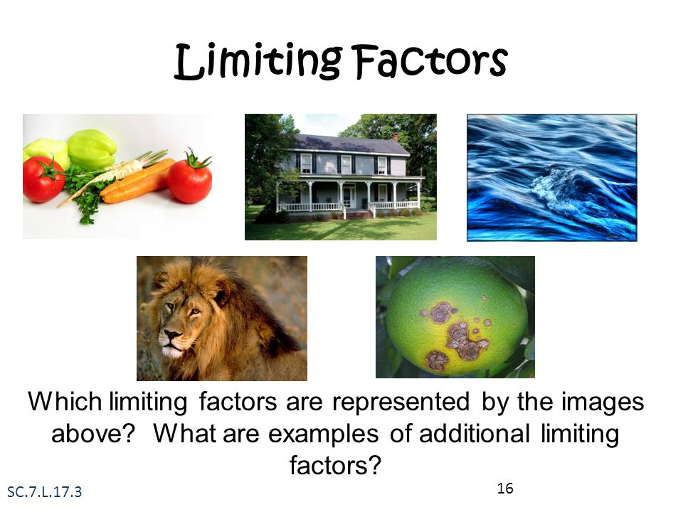 Limiting Factors Which limiting factors are represented by the images above What are examples of additional limiting factors