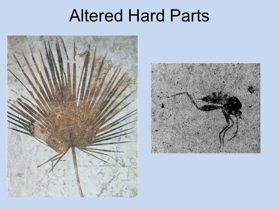 Altered Hard Parts