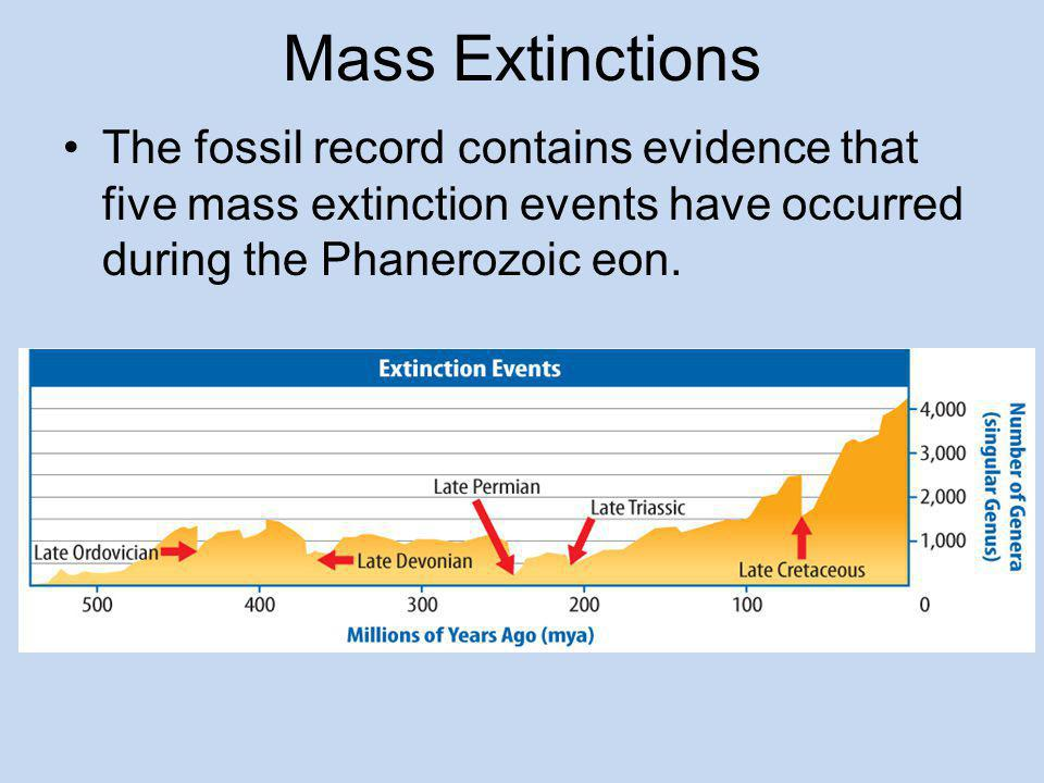 Mass Extinctions The fossil record contains evidence that five mass extinction events have occurred during the Phanerozoic eon.