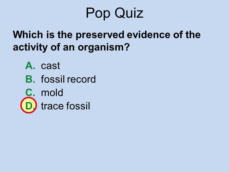 Pop Quiz Which is the preserved evidence of the activity of an organism A. cast. B. fossil record.