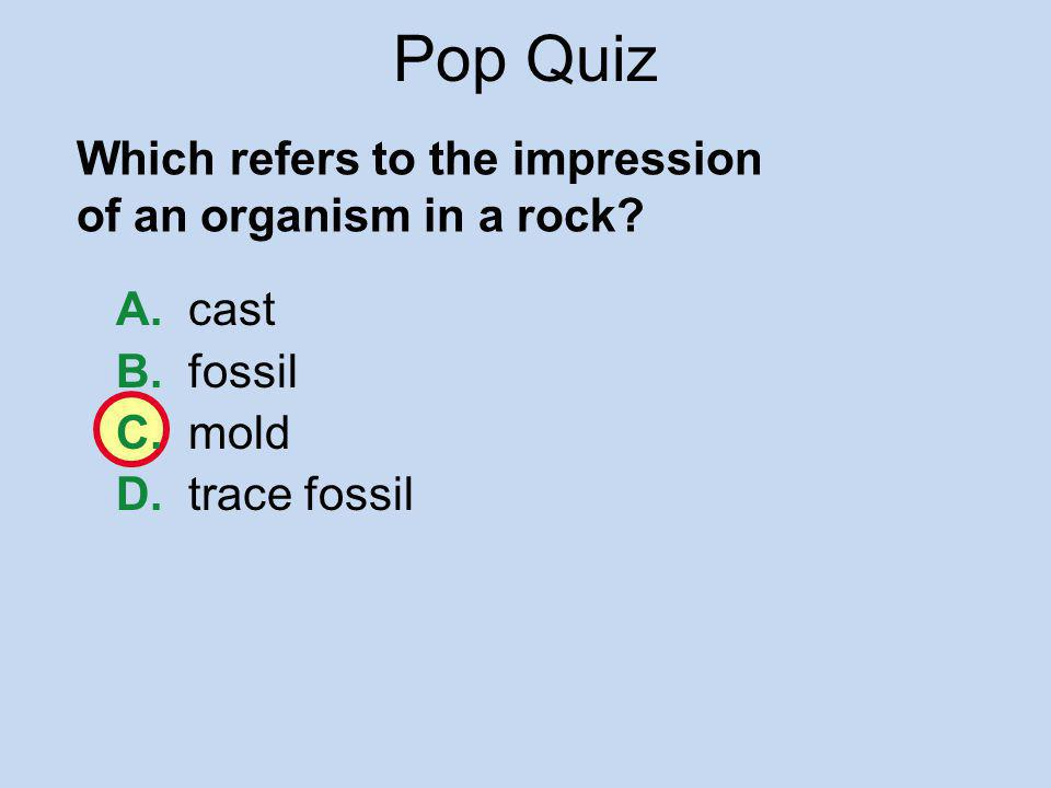 Pop Quiz Which refers to the impression of an organism in a rock