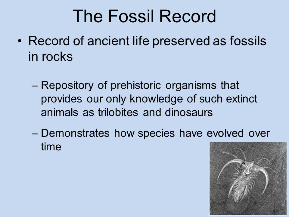 The Fossil Record Record of ancient life preserved as fossils in rocks