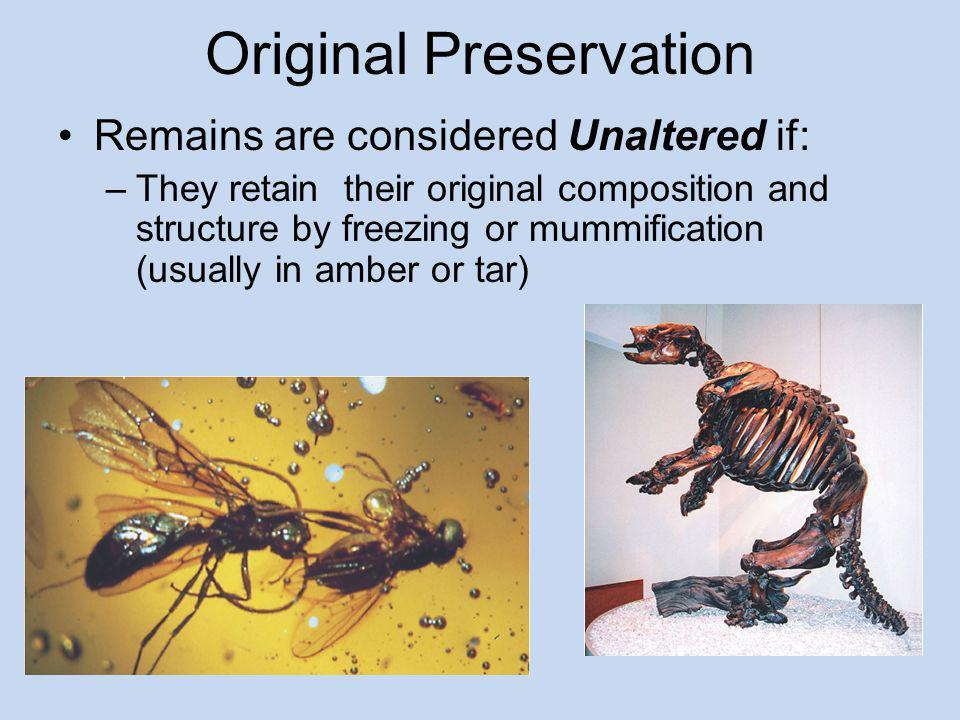 Original Preservation