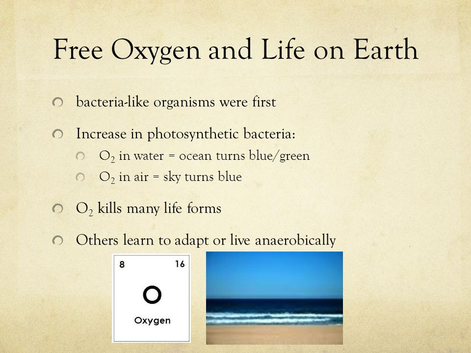Free Oxygen and Life on Earth