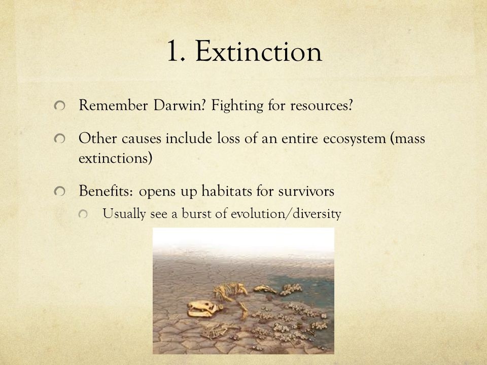 1. Extinction Remember Darwin Fighting for resources