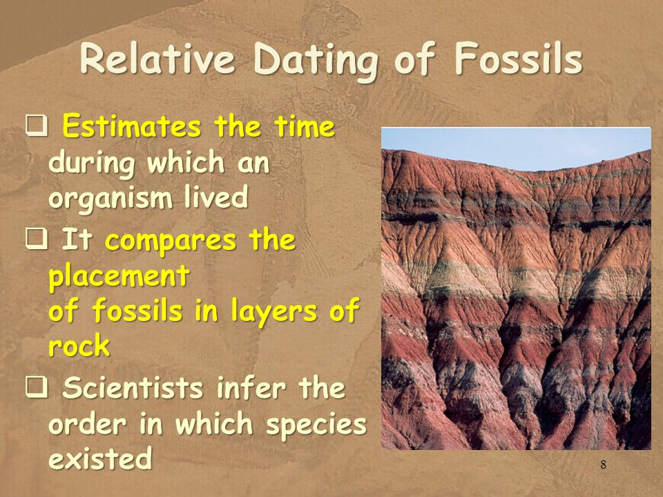 Relative Dating of Fossils