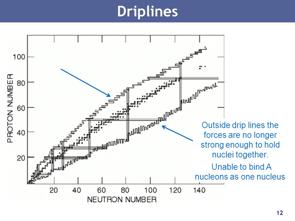 Driplines Outside drip lines the